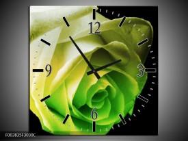 Wandklok op Canvas Roos | Kleur: Geel, Groen, Zwart | F003835C